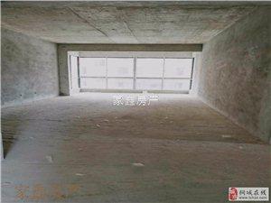 金星中央城 高端社区 单价6000多 大户型三居室 电梯房