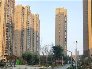 万汇地产:东方名都精装两房,稀缺户型,投资首选!