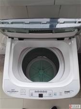 转让小鸭5.5公斤全自动波轮洗衣机