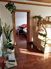 朝阳镇宝丰花园3室1厅1卫500元/月