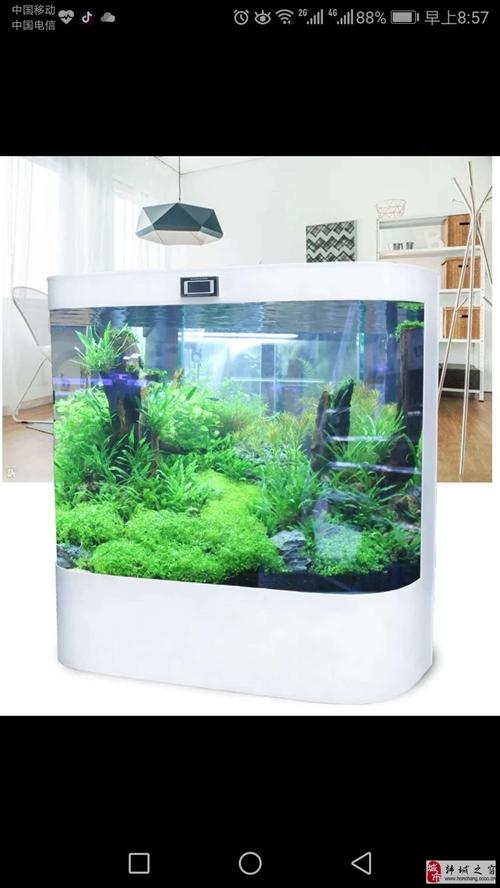 全新玻璃魚缸低價轉讓