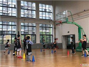 【免费体验】MR.B外教篮球课,爱运动的孩子运气不会差!