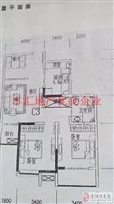 上海城2室2厅1卫59.8万元