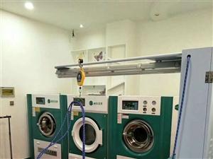 全套干洗水洗设备,皮具护理设备转让