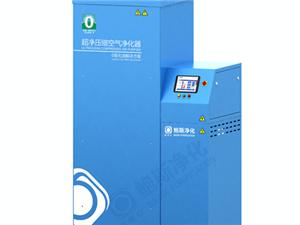 超净压缩空气净化器CAC无油净化 0级无油空气解决方案