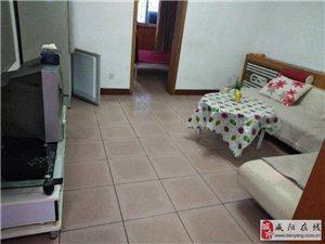 彩虹转盘(安居一村)简装两室一楼送后院