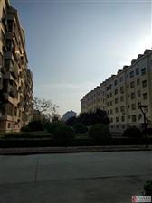 西苑小区3期2楼100平3室朝阳带储藏室免税房