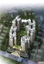 市中心全新一手房均价八千二精装交房