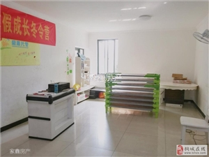 实验中学+明珠广场+电梯高层+精装修+出门即是学校