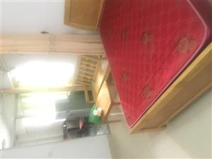 阳光城单身公寓出租,中等装修,拎包入住