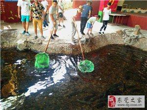 台湾南城周邊自駕游松山湖賞桃花騎行農家樂野炊燒烤
