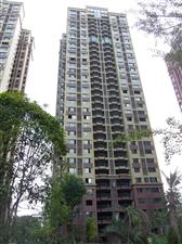 中城国际、现房、包更名、4室2厅2卫126平米