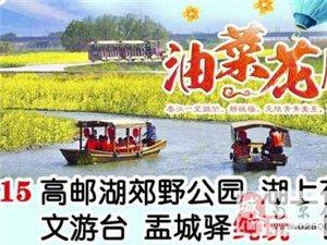 高邮湖郊野公园·湖上花海 文游台 盂城驿1日游