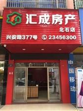 蓝溪国际水晶城1室1000元/月