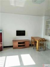 顾家公寓57平方单身公寓家电全冰箱彩电空调近商业