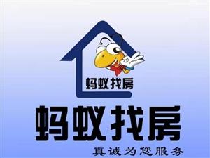 朝阳路政协大楼3室1厅1卫1300元/月