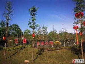 重庆路边一生态火锅整体出租,到手即可经营