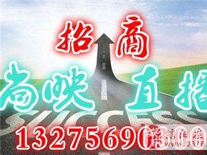 尚映直播招商平臺豬年紅紅火火