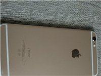 出售5個蘋果6和5個蘋果6p打包價7500元