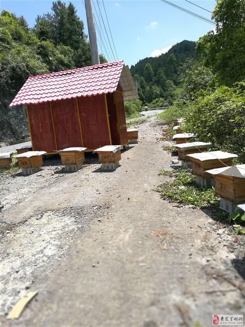 养殖帐篷小屋天楼地枕两层全屋可以拆卸住2楼