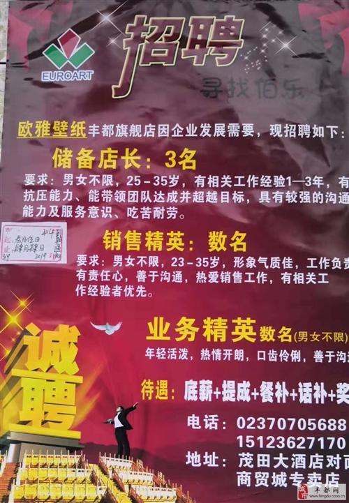 歐雅壁紙+榮華布藝豐都經營部