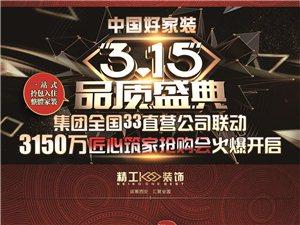 中国好家装品质315