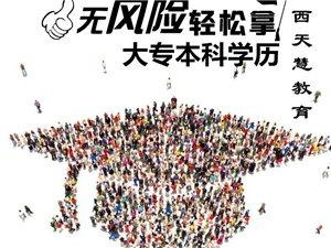金溪县成人高考招生报名中