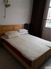 龙8国际娱乐城县中和镇凤翔路茶园小区1室1卫400元/月