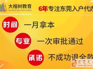 2019台湾人才入戶 落戶條件及辦理方法找大榕樹