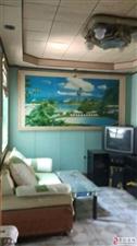 绢纺厂宿舍,2室1厅1卫800元/月