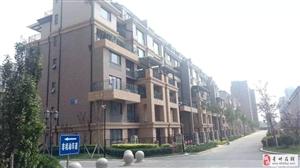 九州家园3室2厅1卫83万元