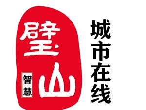 璧山網絡公司