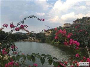 凤凰谷 带天然温泉的房子 30万买45平米一房