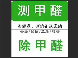 专业除甲醛(室内空气检测与治理)
