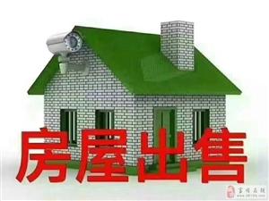 滨江一号毛呸房,2019年6月份交房