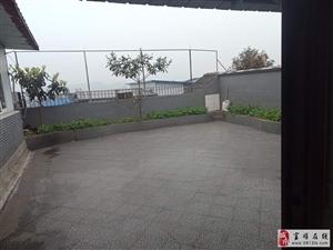 县政府附小区2室,1厅,1卫800元/月(全齐)