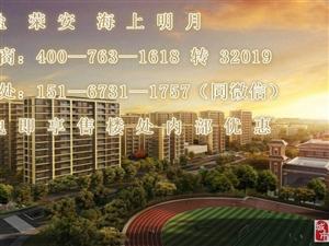 海盐荣安海上明月——2019震惊消息!惊讶?。?!