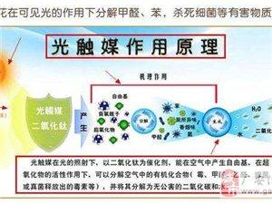 广安光触媒除甲醛公司_办公室去除甲醛异味