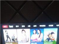 工作室不開了,全新電視緊急售 ?。。?!
