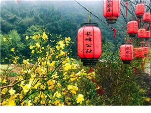 长阳【长峰公社】四月中旬重装开业!欢迎大家惠顾!