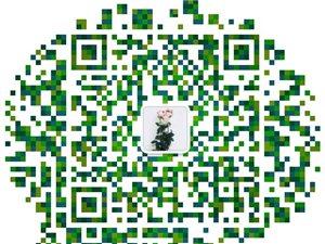 武威質量管理體系認證9001認證專業辦理