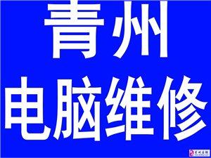 青州电脑城正规技术上门维修电脑、网线、局域网、广域