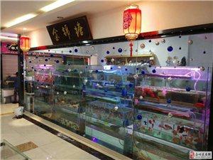 水族馆转让或出售鱼缸及设备