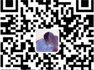 电商淘宝软件贴牌定制全国火热招商中