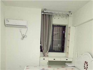 不夜城公寓精装修出租