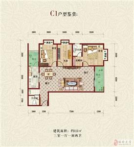 C1户型 三室一厅一厨两卫113平米
