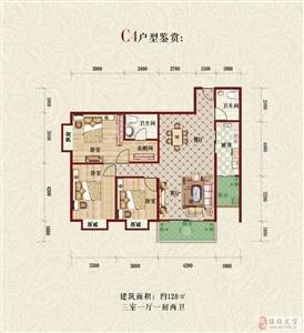 C4户型 三室一厅一厨两卫120平米