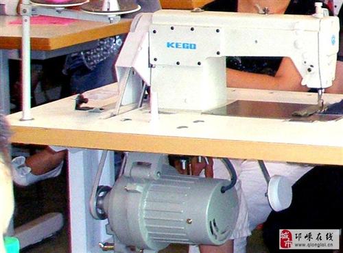 低价出售电动平缝机(精工牌)100台(可单台出售)