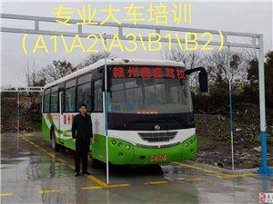 大车A1A2A3B1B2招生,欢迎大家前来报名