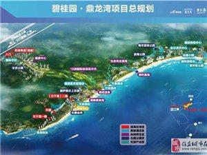 广东湛江鼎龙湾海景房房子真是意想不到的价格!